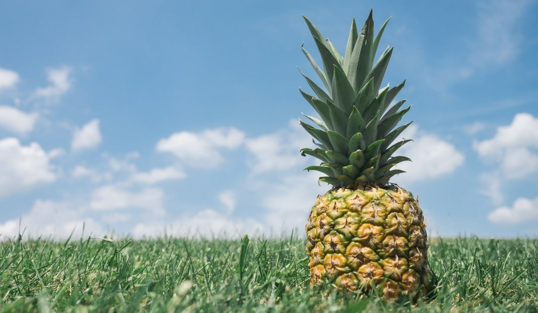 Natural Labor Induction Series: Evidence on using Pineapple to Naturally Induce Labor