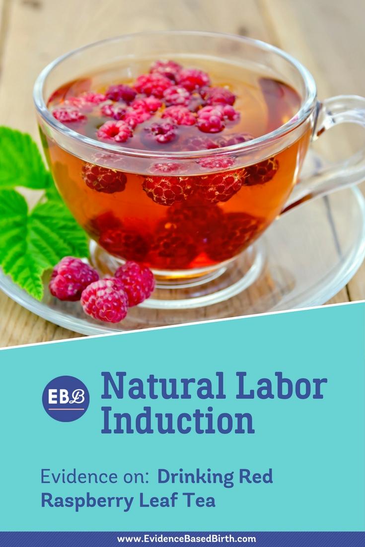 Red Raspberry Leaf Tea Pinterest